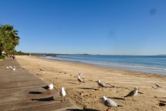 Noosa-Main-Beach-in-the-morning