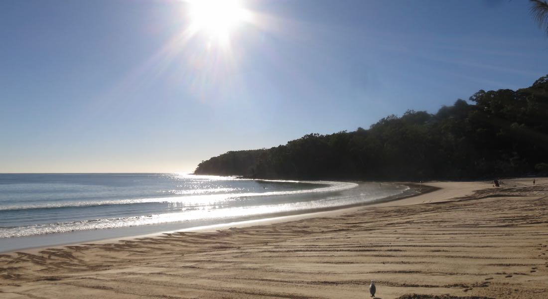 Easy, level walk to Noosa beach