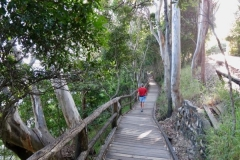 Walking-to-the-Noosa-National-Park